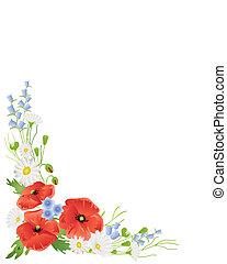 wildflower, frontera