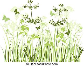 wildflowers, pradera