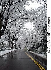 Winter in Washington DC,