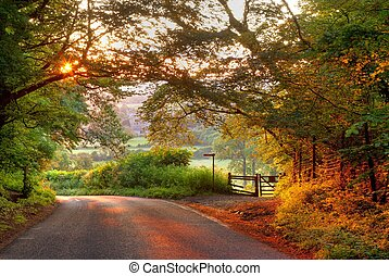 Wooded English country Lane al atardecer
