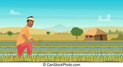 working., cosechar, granjero, campo, plano de fondo, caricatura, estilo, indio, agricultura, vector, asia