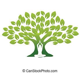 Yoga y árbol